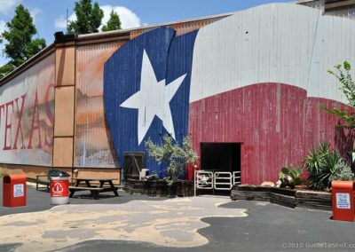 Texas Arena