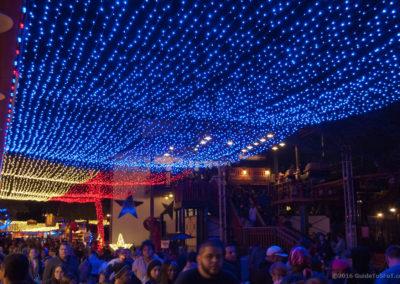 Texas Flag Light Canopy